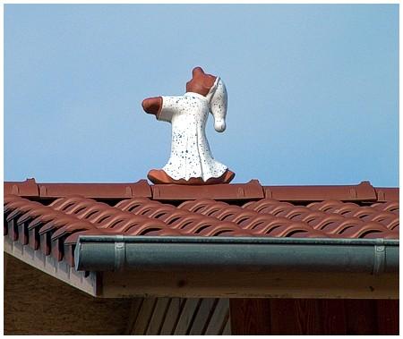 Holzbau Ohms Dacharbeit Dachdecker